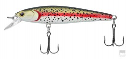 Dynamic Lures Product Photo 3