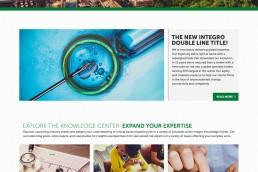 Integro Website Design