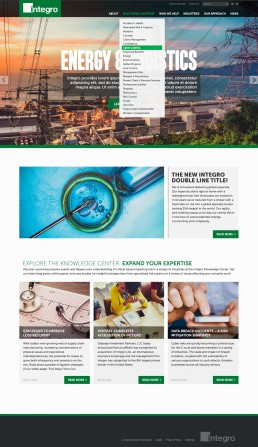 Integro Website Design